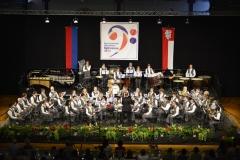 08.06.2014 Festa Cantonale della Musica a Bellinzona